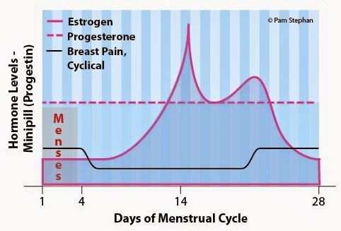 Progesterone pills to stop period