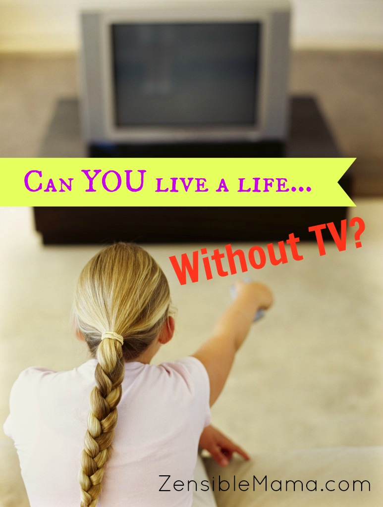 life without television Life after people examines what will happen to the houses and tombs of world leaders in a world without people it looks at the white house, versailles, grant's tomb, and monticello 83.