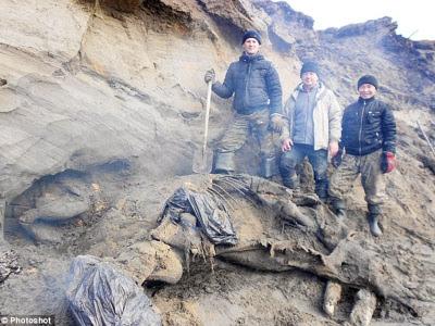 fosil gajah berusia 30,000 tahun