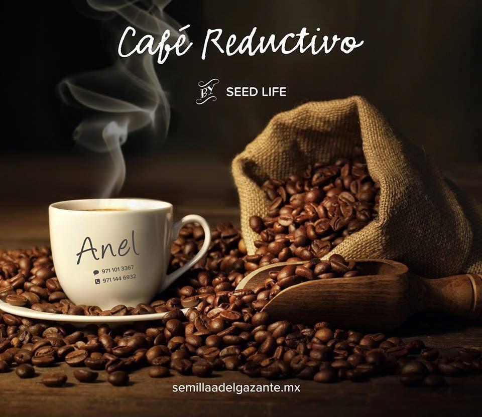 CAFE DE SEED LIFE