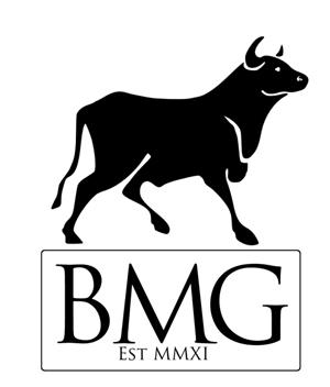 Bull Media Group
