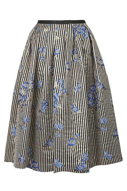embroidered stripe skirt