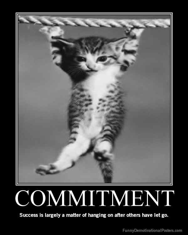 Iron-Fit: commitment