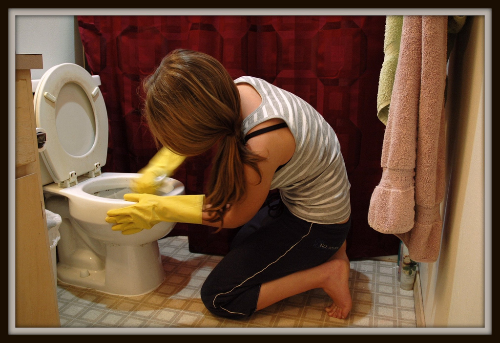 toilet cleaning, cleaning supplies, DIY cleaning recipes