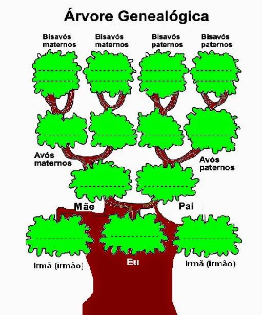 Muito Companheiros da Educação: Árvore Genealógica Para Educação Infantil YI95
