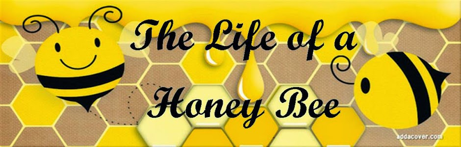 The Life of a Honey Bee