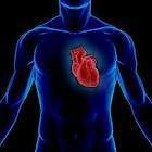 train heart