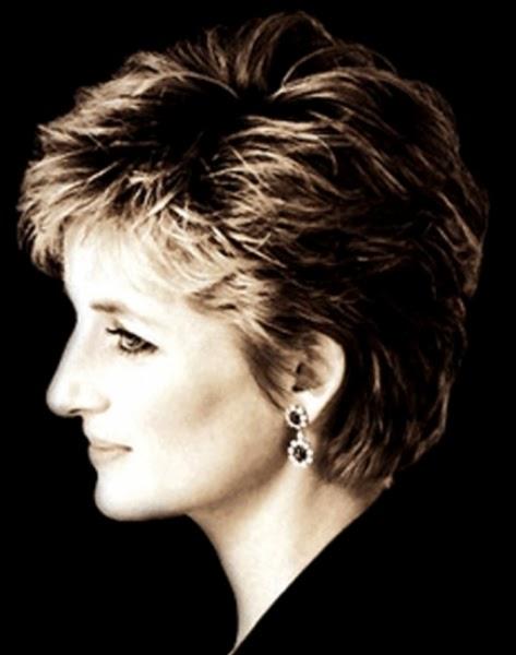 The Olde Barn: Diana, The Last Princess
