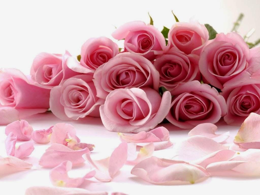 Imagenes Y Fotos De Rosas Tiernas
