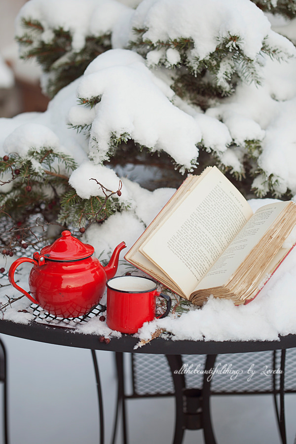 Lectura invernal