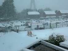 Winter 2010
