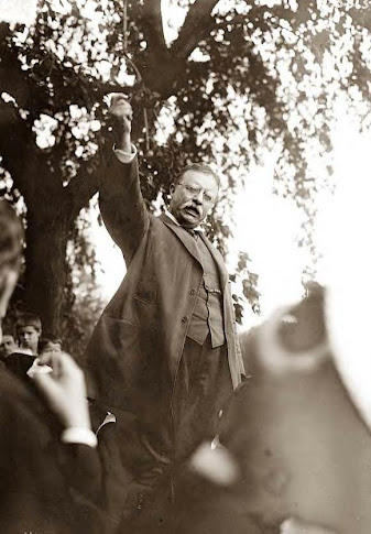 Roosevelt speaking at Oyster Bay, 1916