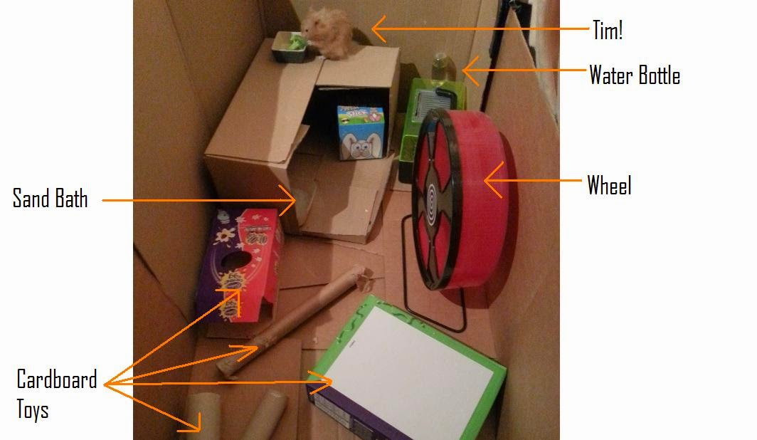 Lariath- Live a Little.: DIY Hamster Play Pen