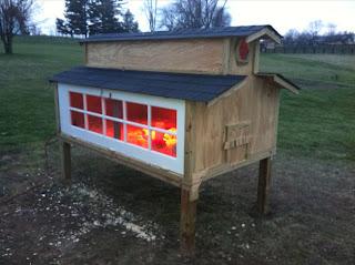 backyard, chicken, coop, backyard chickens, chicken coop