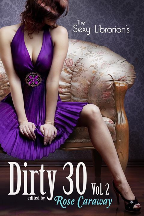 The Sexy Librarian's Dirty 30: Vol.2