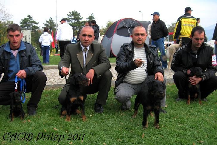 CACIB-PRILEP-2011