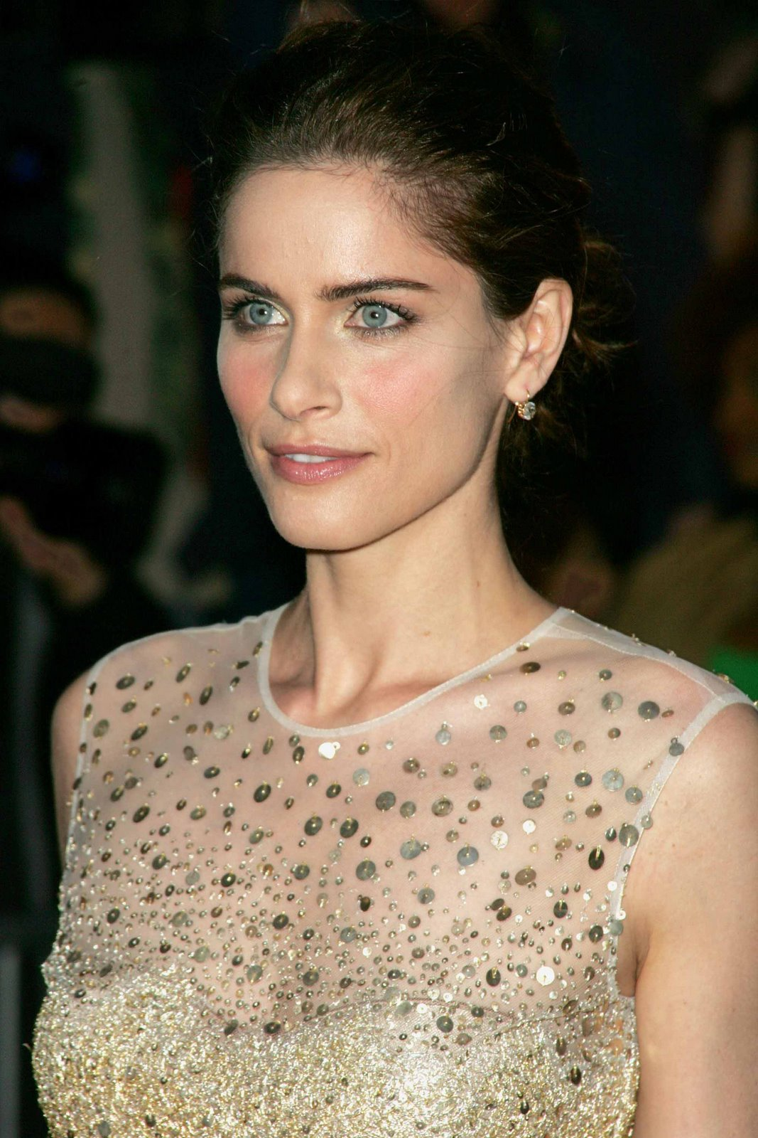 Amanda Peet In Party Wear Hd Photos Collection