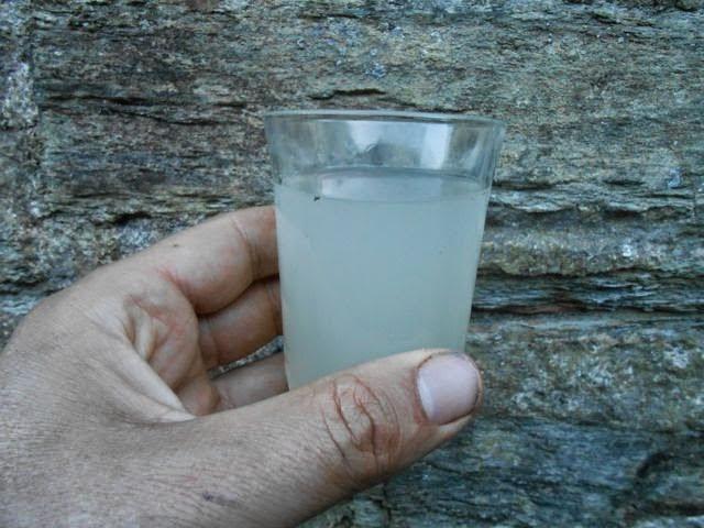 Mauka (Mirabilis expansa) drink mauka-ade