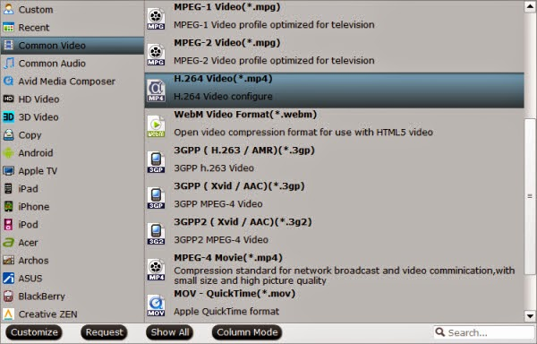 playbale video format