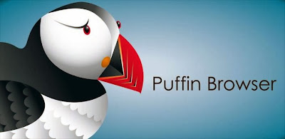 Puffin Web Browser apk latest full version free download for Android