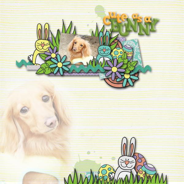 DSB  Cute as a Bunny