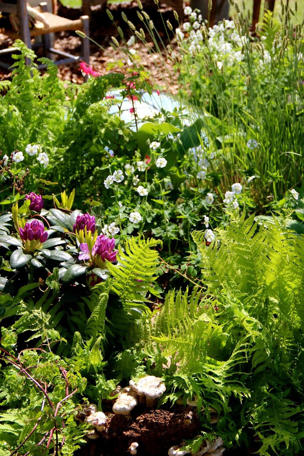 En grön sida: malmö garden show, del ii