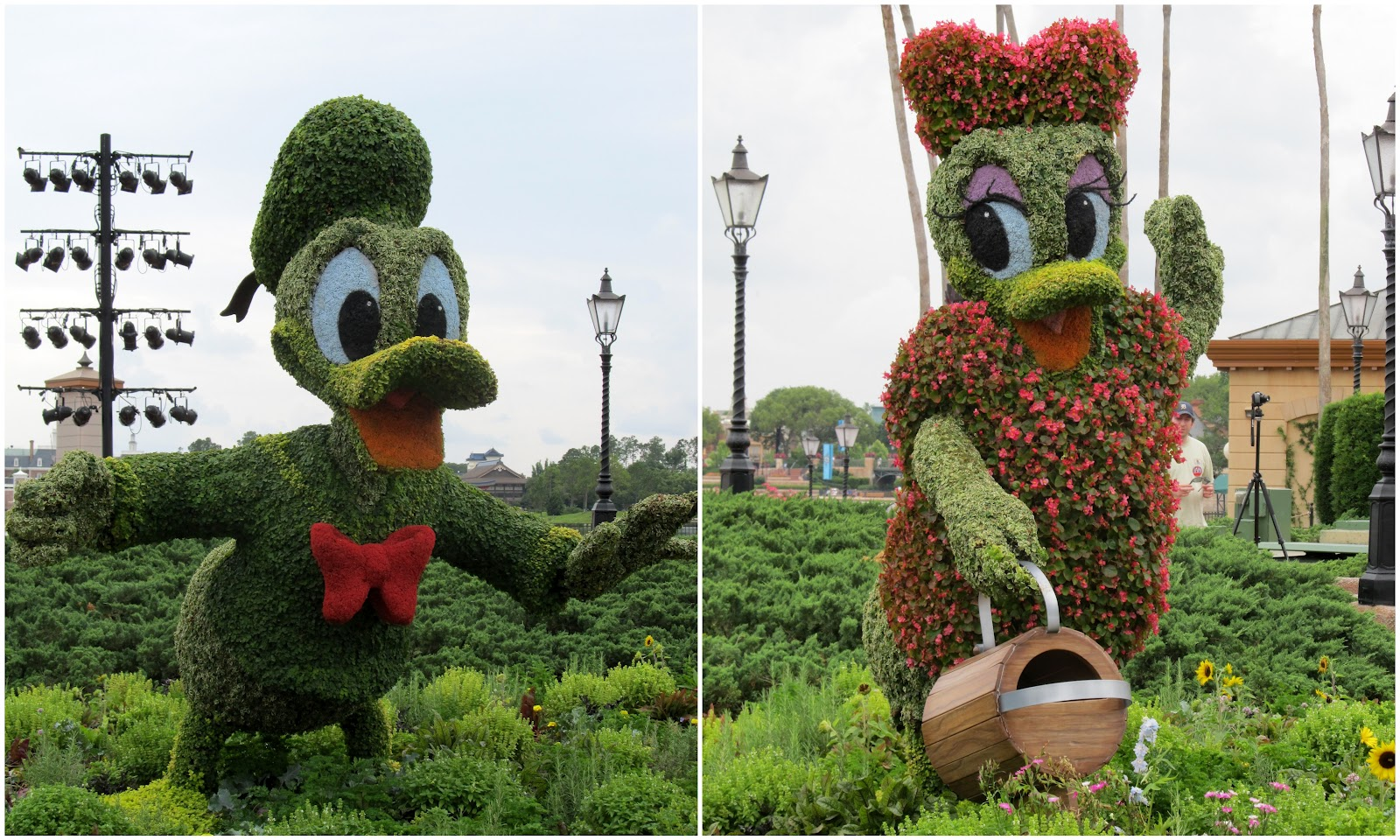 Disney World Epcot Flower And Garden Festival From The South