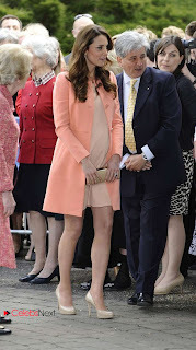 Kate Middleton Pictures in Stylish Dress at Children's Hospital  0003
