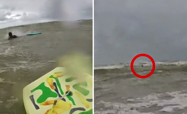 Video purportedly shows shark attack on bodyboarder in France