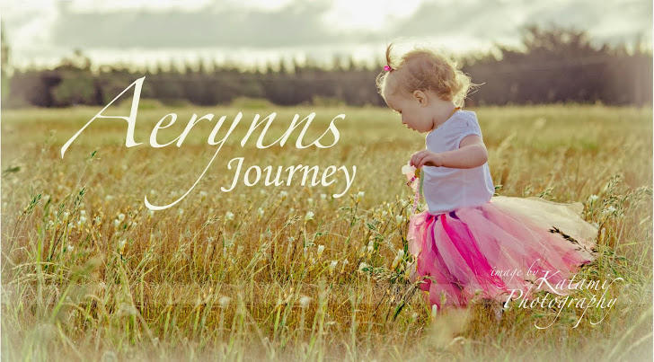 Aerynns Journey