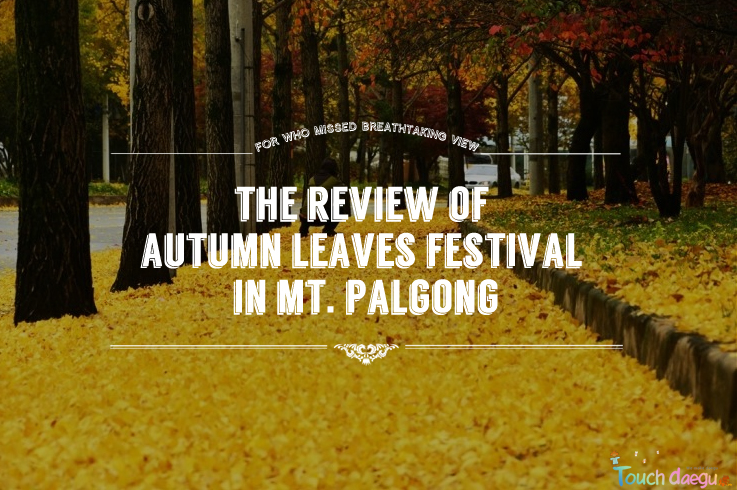The review of Autumn Leaves Festival in Mt. Palgong
