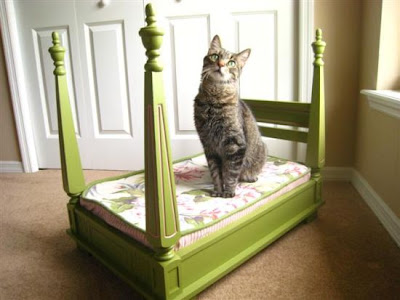 fabulous diy cat bed
