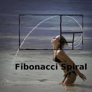 Fibonacci Spiral in Nature and natural world