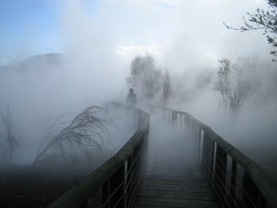 (New Zealand) - Rotorua