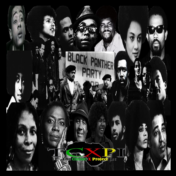 TCXPI Presents The Black Panther Party for Self Defense (Click image to view)