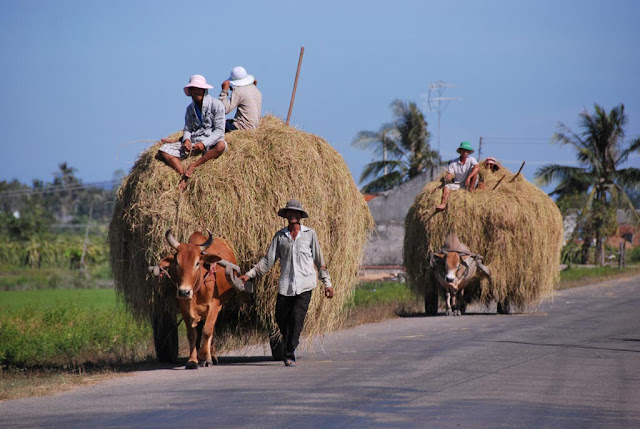 Plage de Ham Thuan Nam, Binh Thuan