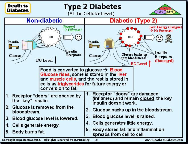 life sciences essay on type diabetes essay writing help company life sciences essay on type 2 diabetes
