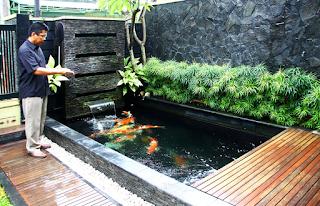 Desain Kolam Ikan Minimalis Terbaik dan Sejuk