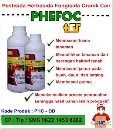 PHEFOC- HCS