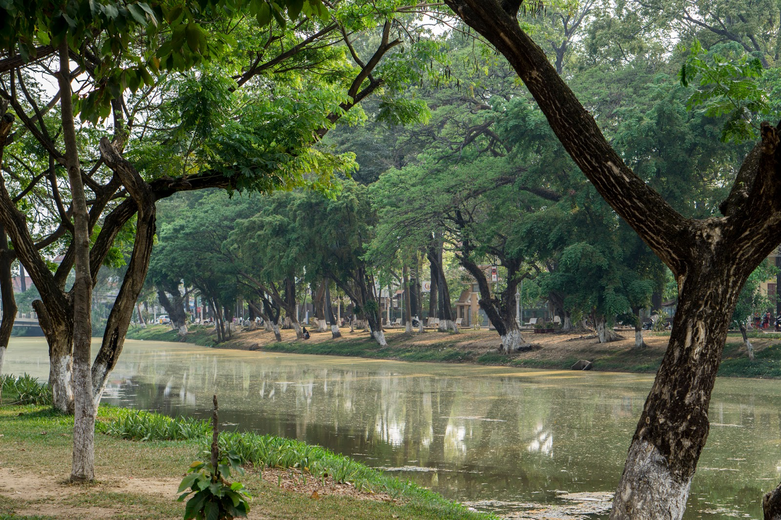 how to go from phnom penh to angkor wat