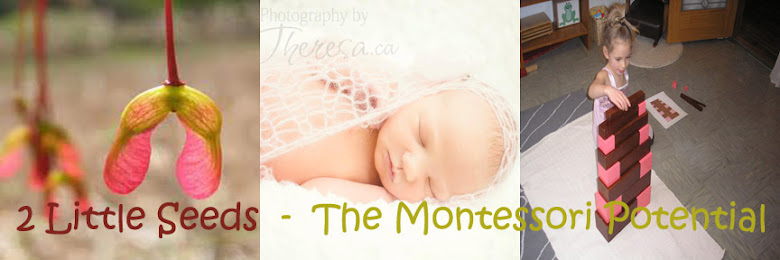 2 Little Seeds- The Montessori Potential
