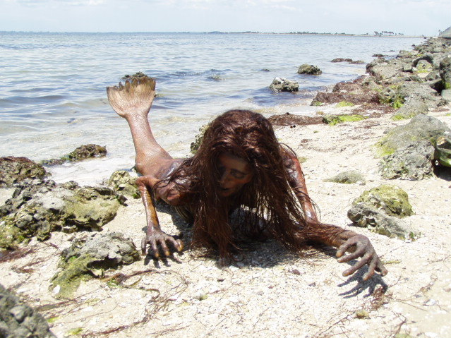 Real Mermaid Found