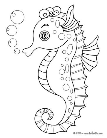 seahorse coloring pages pictures