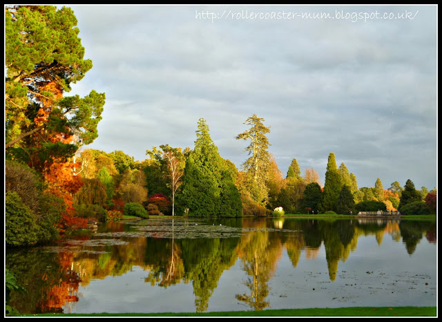 autumn reflections National Trust Sheffield Park Garden