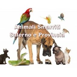 ANIMALI SMARRITI SALERNO E PROVINCIA - PAGINA FB APPELLI