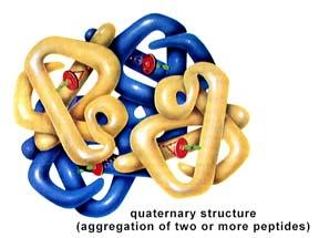 livre gratuit biochimie