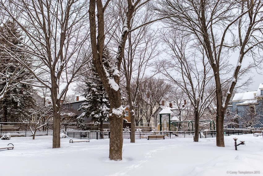 Portland, Maine Winter January 2015 McIntyre Park in the West End photo by Corey Templeton.