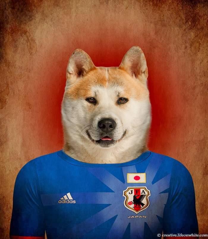 Japan – Akita Inu