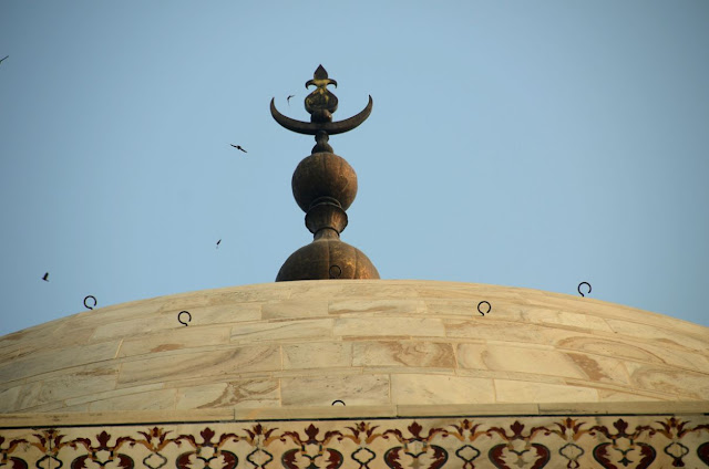 ताज के गुम्मद पर स्थापित कलश किसके ऊपर नारियल की आकृति बनी है