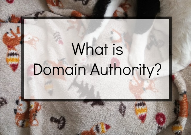 what is domain authority and how can I improve my DA on Hello Terri Lowe blog.